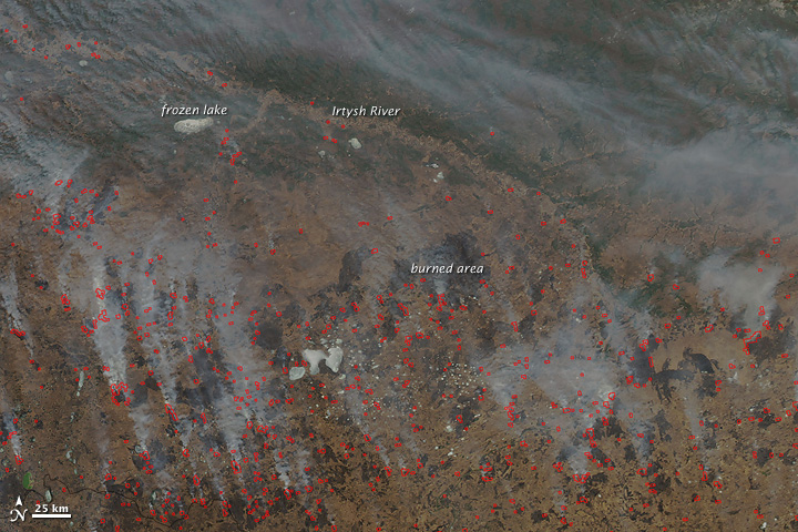 Fires across Tyumen and Omsk Regions, Southern Russia