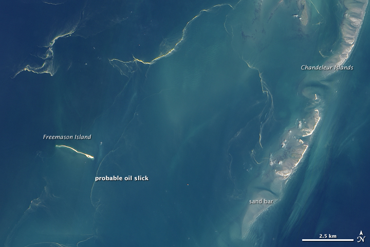 Oil Reaches Chandeleur Islands, Louisiana