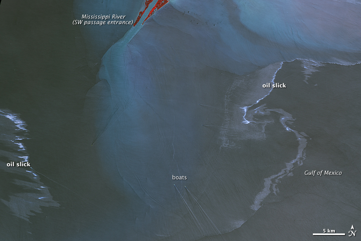 Oil Slick near the Mouth of the Mississippi