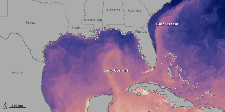 Gulf Oil Slick Approaching Loop Current
