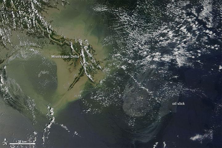 Oil Slick off the Mississippi Delta
