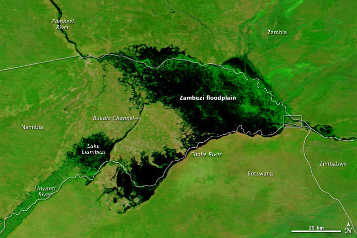 Zambezi Flood Plain, Namibia