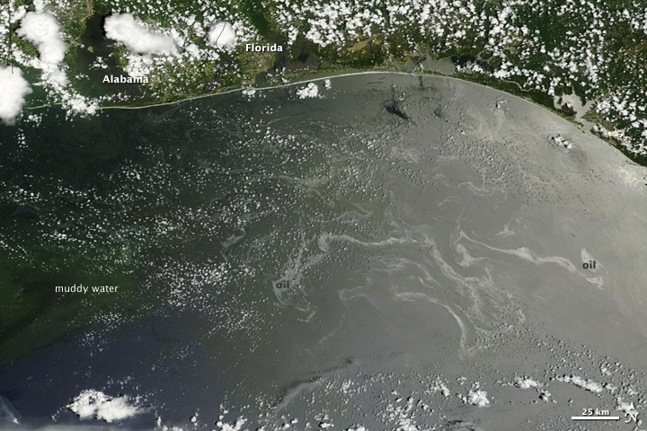 Oil Offshore of Alabama and Florida's Western Panhandle