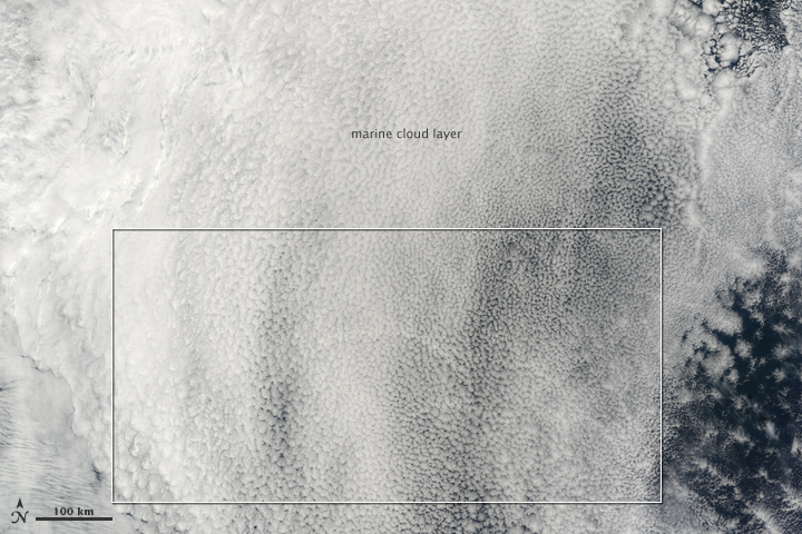 Ship Tracks in the North Pacific