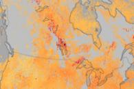Carbon Monoxide Levels Trace Spread of Smoke Across Canada