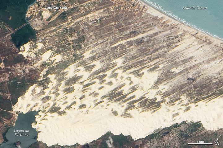 Brazilian Dune Fields