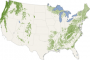 Forest Canopy Heights Across the United States