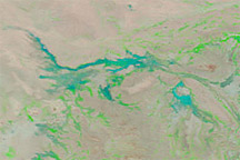 Flooding in Niger