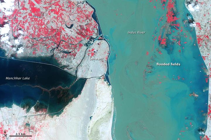 Indus River and Manchhar Lake