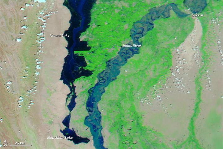 Rising Waters in Manchhar Lake