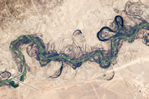 Syr Darya River Floodplain, Kazakhstan, Central Asia