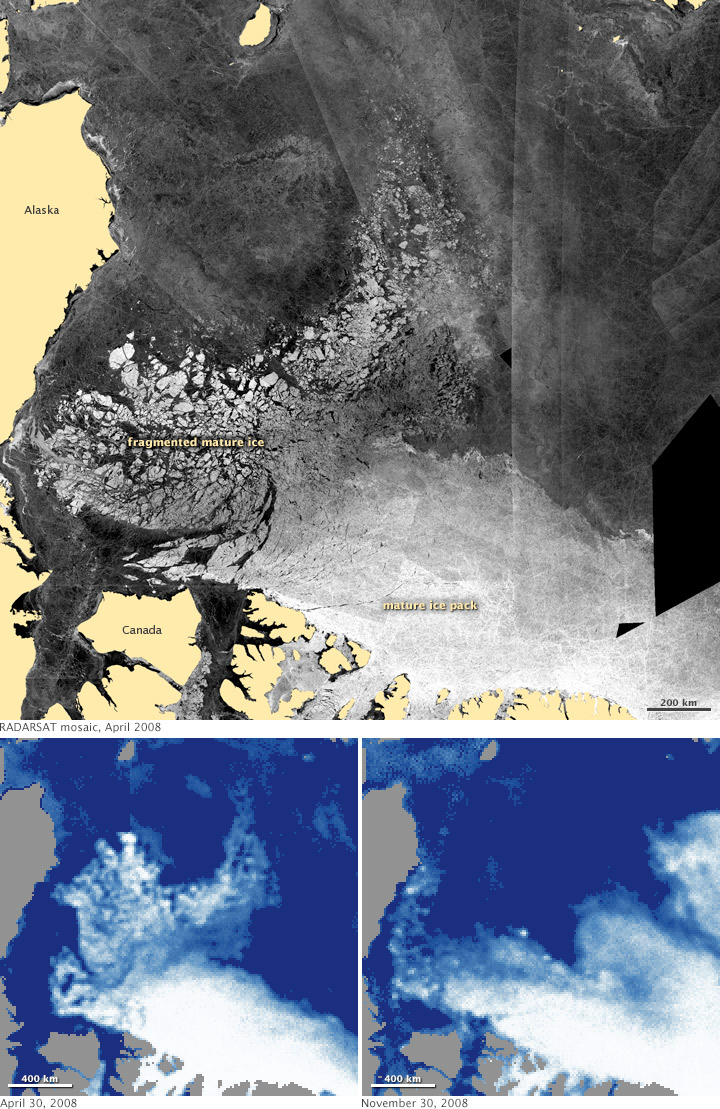 Arctic Sea Ice Melting and Moving - related image preview