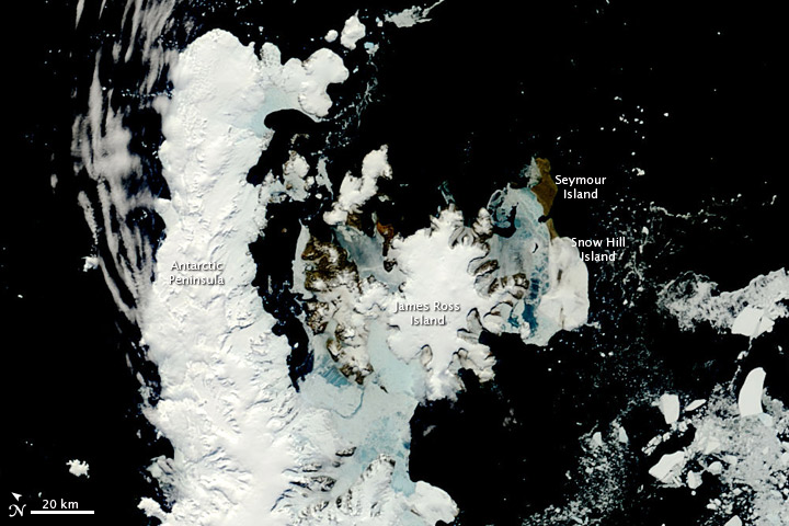 Spring on the Antarctic Peninsula