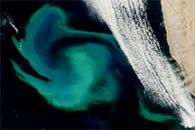 Bright Waters off the Namibian Coast