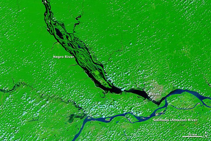 Brazil's Negro River Reaches Record Low