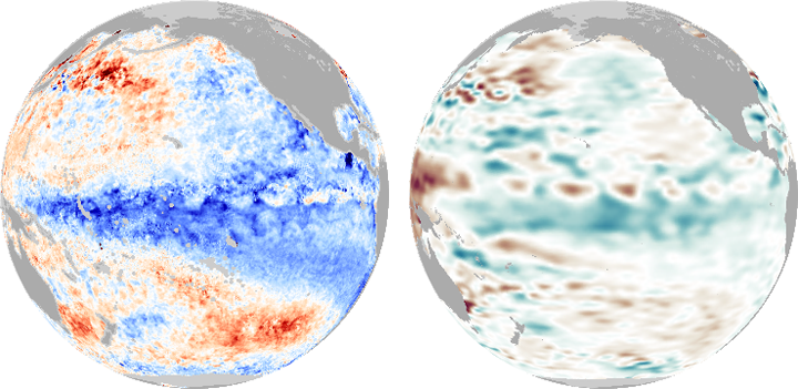 Sea Surface Temperature and Height Anomaly