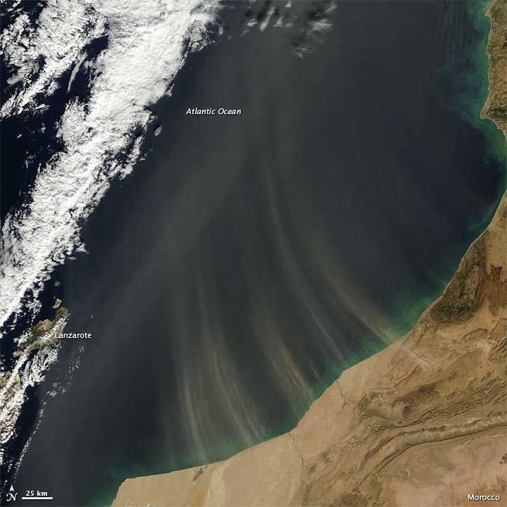 Dust Plumes off Morocco