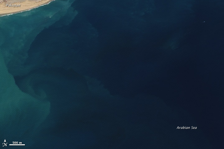 Mud Volcano Emerges from the Arabian Sea