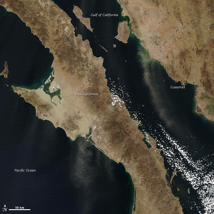 Dust Plumes off Mexico