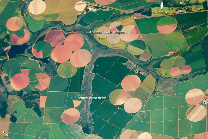 Agricultural Fields near Perdizes, Minas Gerais, Brazil