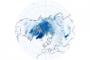 Melting Snow and Ice Warm Northern Hemisphere