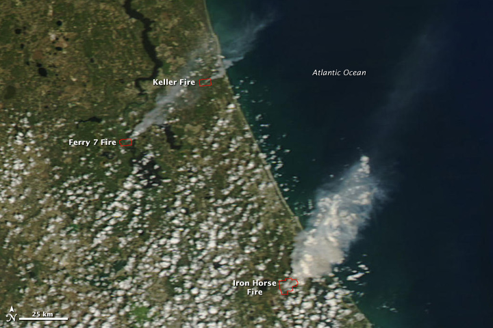 Wildfires in Florida