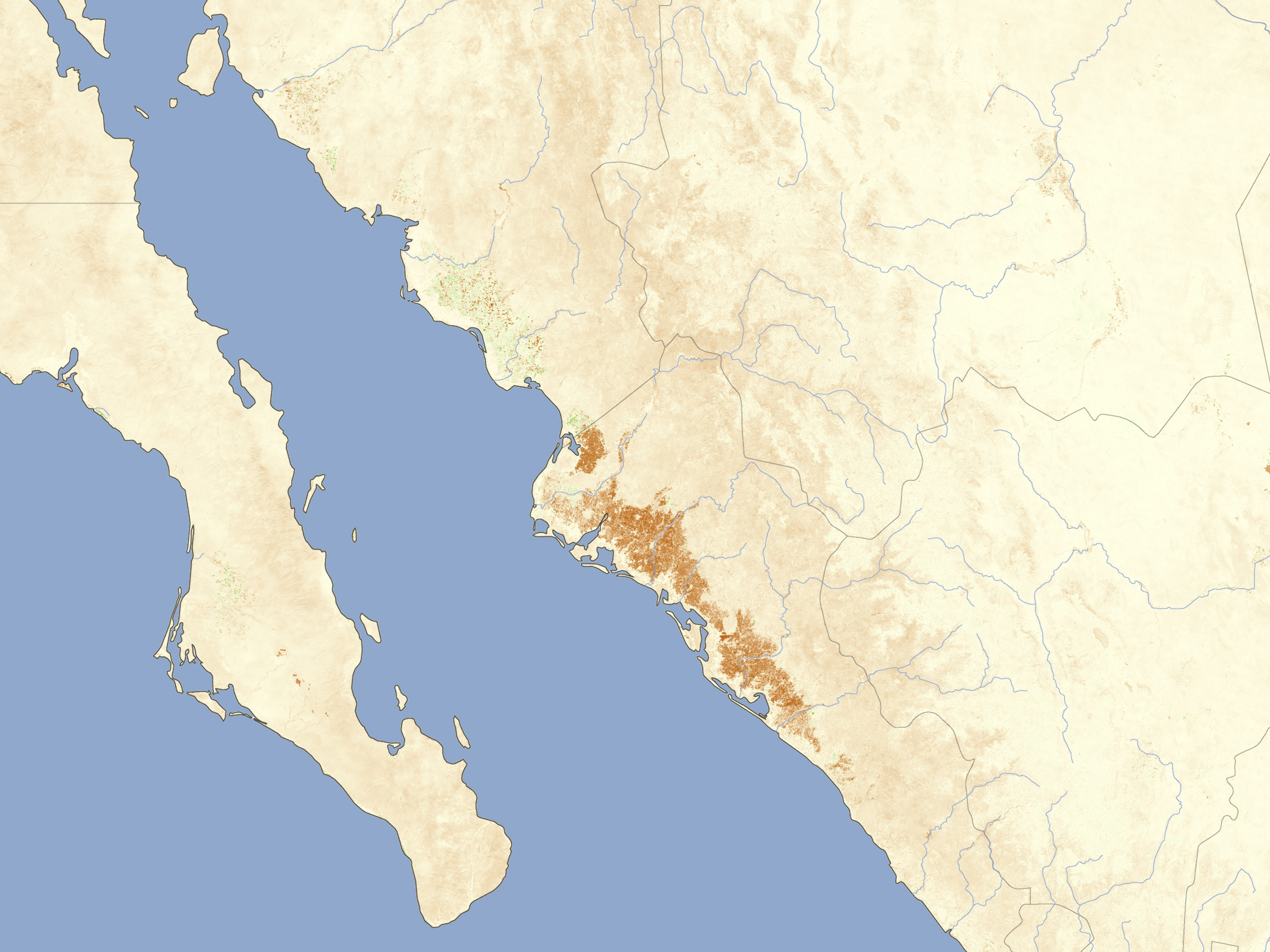 Cold Weather Damages Crops in Sinaloa, Mexico on badiraguato map, tabasco map, mexico map, zacatecas map, pitiquito map, tamaulipas map, durango map, fuerte river map, zambezia map, morelos map, hidalgo map, aguascalientes map, nueva esparta map, nayarit map, culiacan map, tlaxcala map, michoacan map, guanajuato map, jalisco map, norte map,
