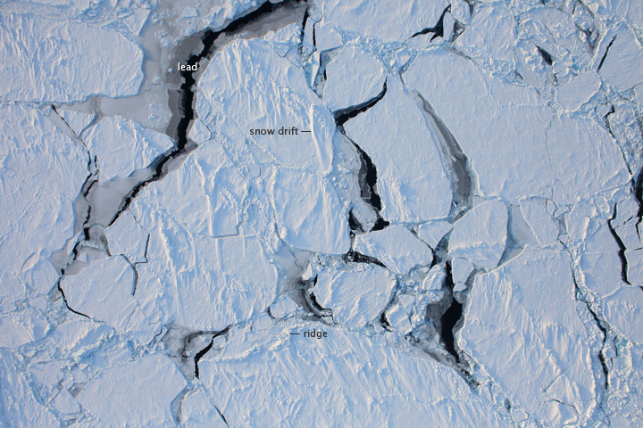 Flying over Arctic Sea Ice