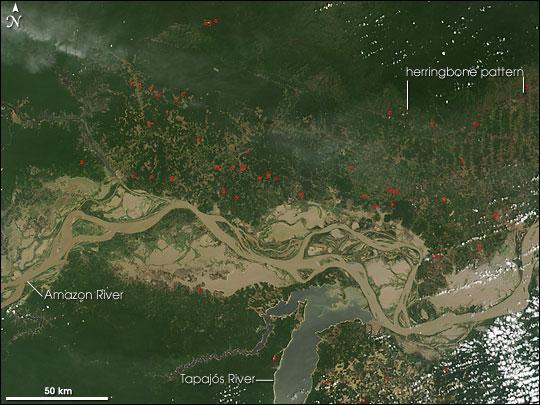 Fires in Para, Brazil