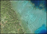 Coral Reefs around Matangi Island, Fiji - selected image