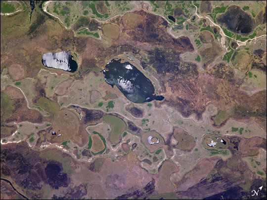 Iberá Swamp Topography, NE Argentina
