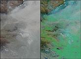 Haze Shadows Winter Crops in China