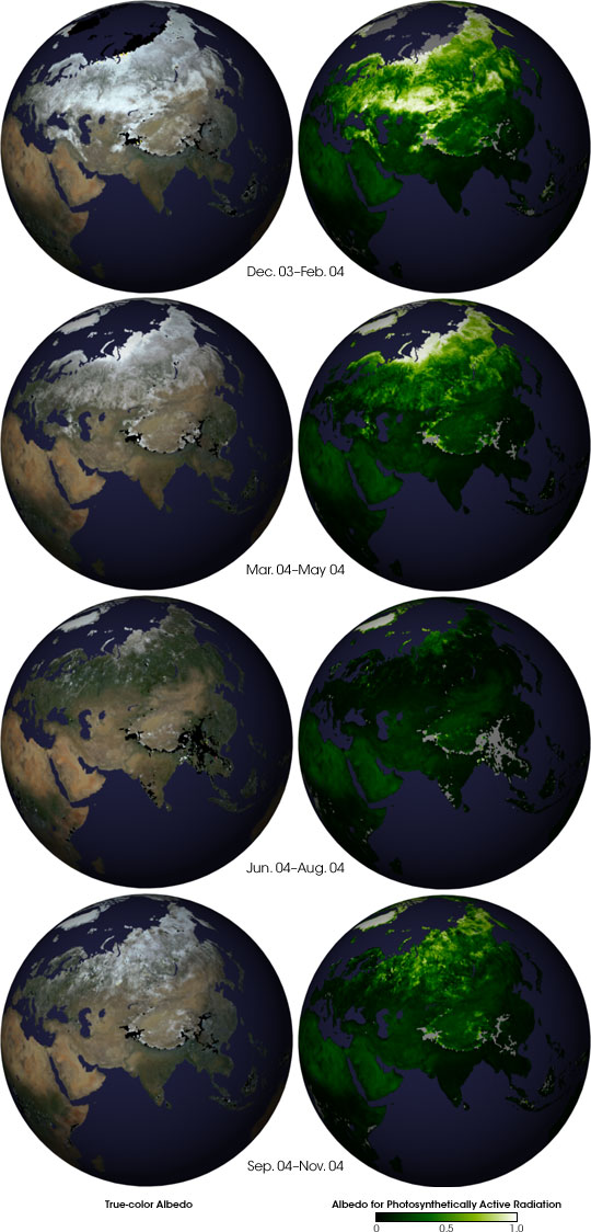 Seasonal Changes in Earth's Surface Albedo