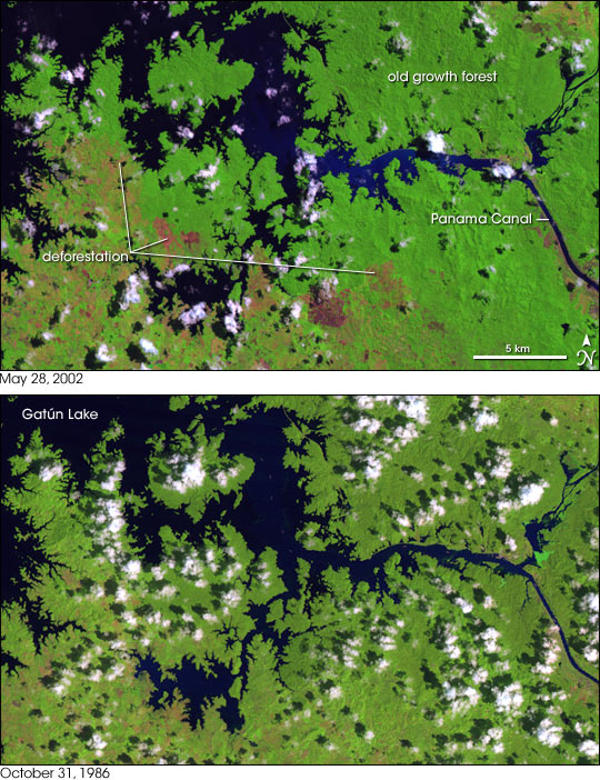 Deforestation around the Panama Canal