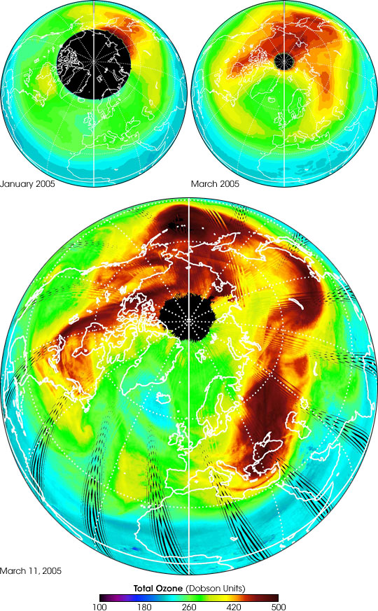 New Measurements of  Arctic Ozone