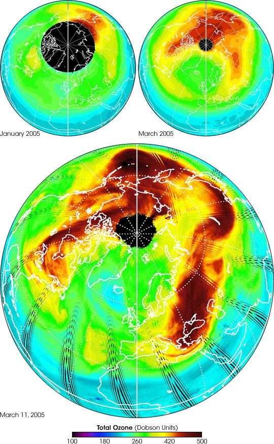New Measurements of  Arctic Ozone