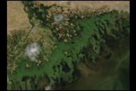 Volga River Delta