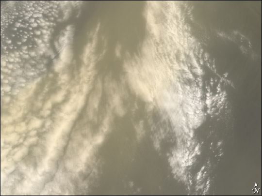 Saharan Dust Cloud Sails Toward U.S.
