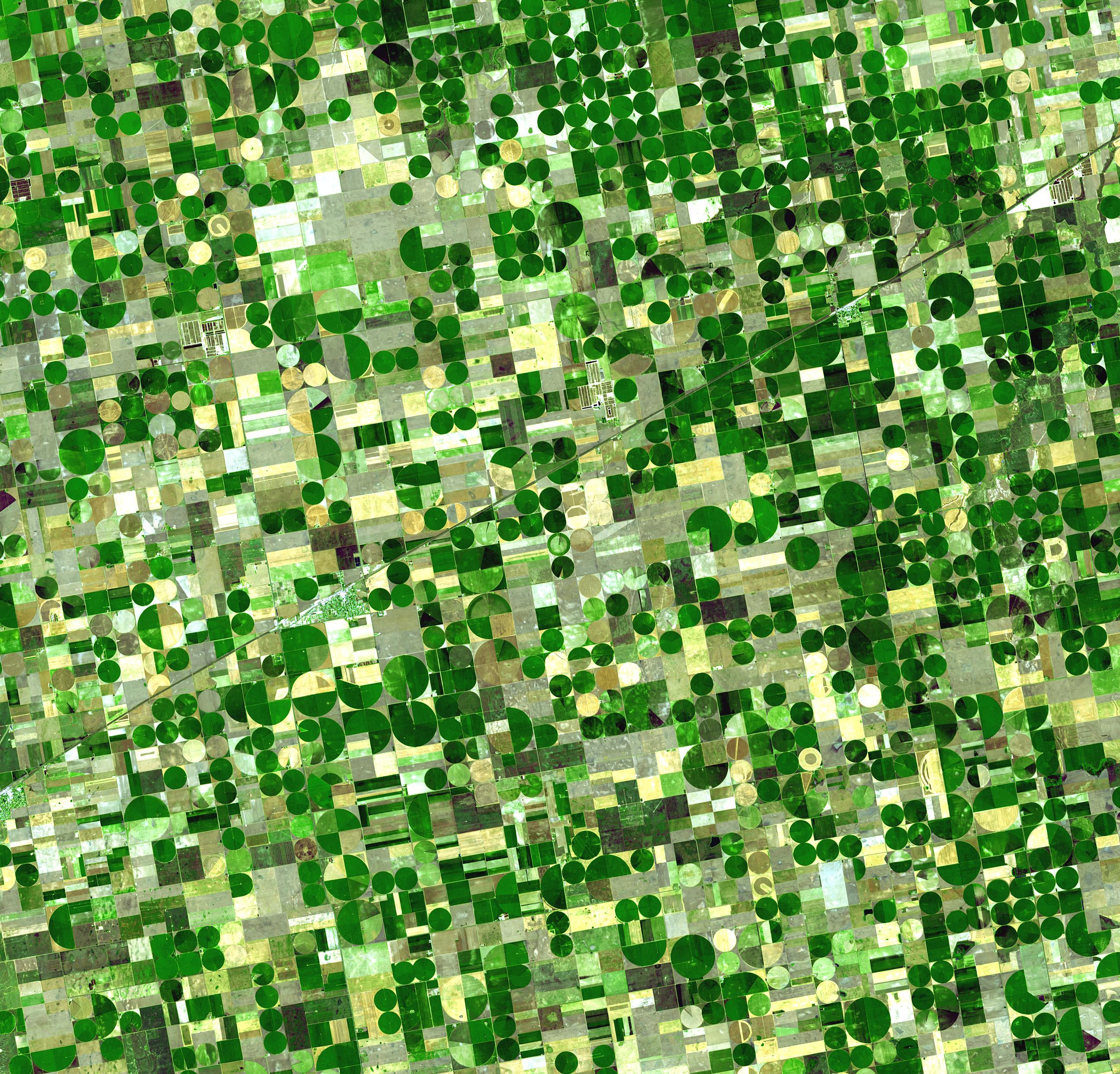 Crop Circles in Kansas