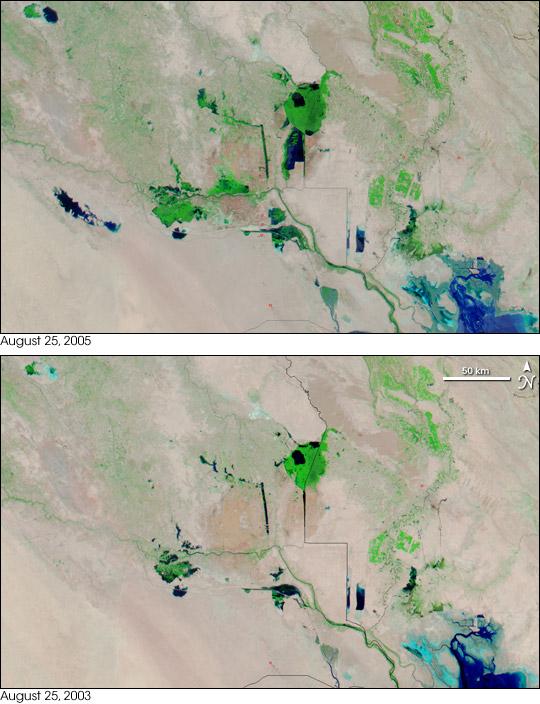The Mesopotamian Marshes