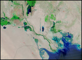 The Mesopotamian Marshes