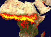 2005 Fire Patterns Across Africa