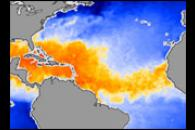 Warm Waters Provide Fuel for Potential Storms