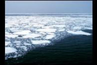Continued Sea Ice Decline in 2005