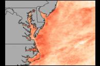 Warm Waters in the Chesapeake