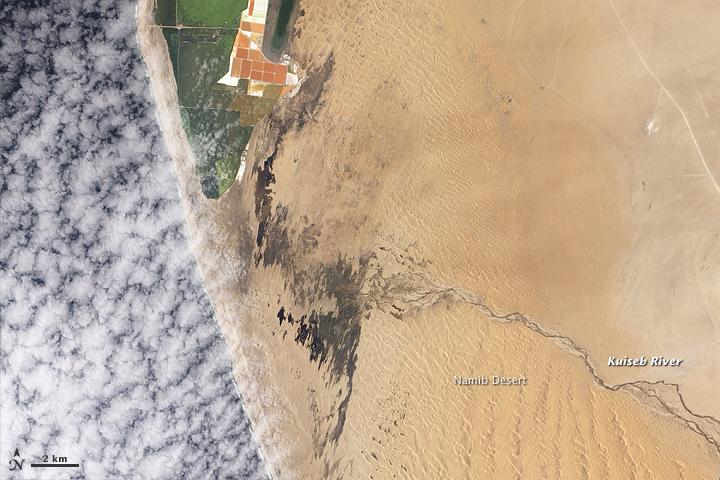 Kuiseb River Reaches the Sea
