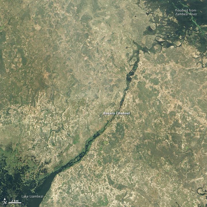 Bukalo Channel and Lake Liambezi