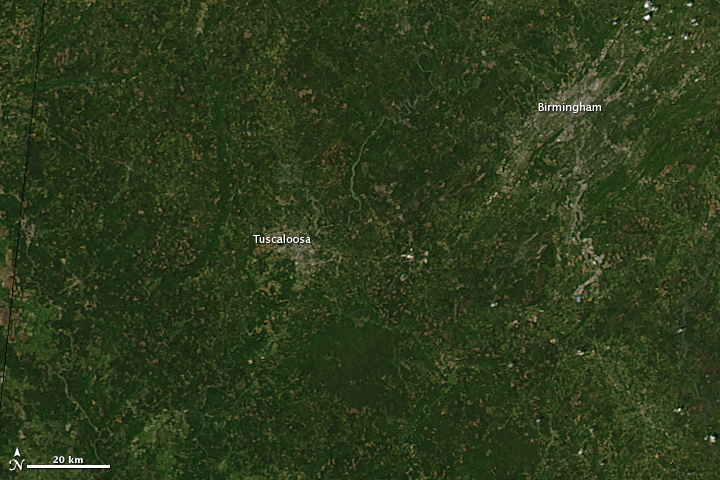 Tornado Tracks in Tuscaloosa, Alabama