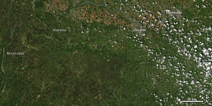 Tornado Tracks in Mississippi and Alabama