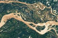 Paraná  River Floodplain, Northern Argentina